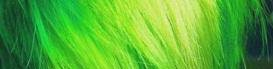 Cheveux vert Irlande